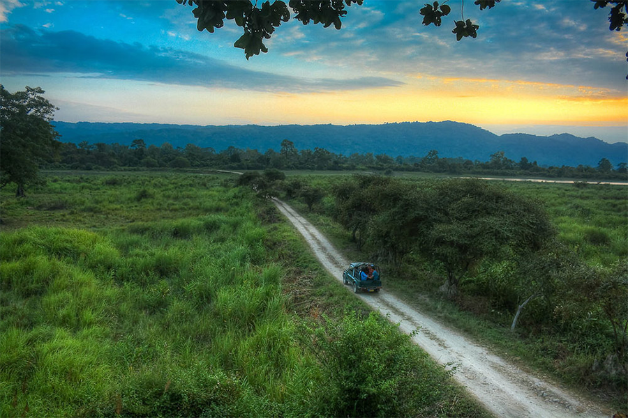 Kaziranga-National-Park.png